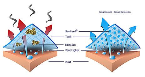 Sanitized Hygiene Schaubild